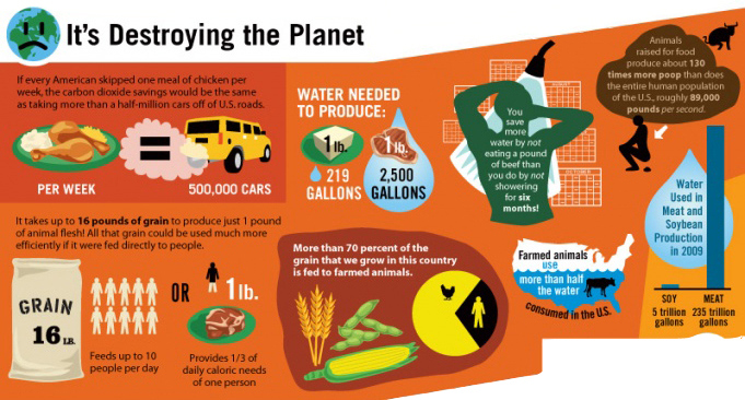 Image of: Peta Animalfactsenvironment Earth Review Wordpresscom Federal Report Vegan Diet Best For Planet Earth Review